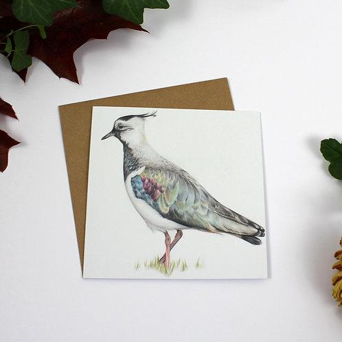 Lapwing Greeting Card