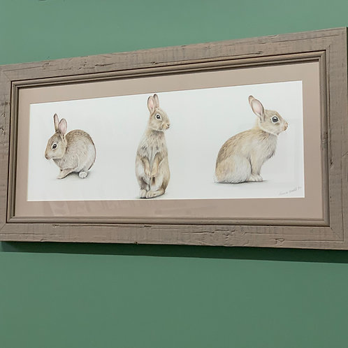 'A Hop, Sniff and a Jump' Original