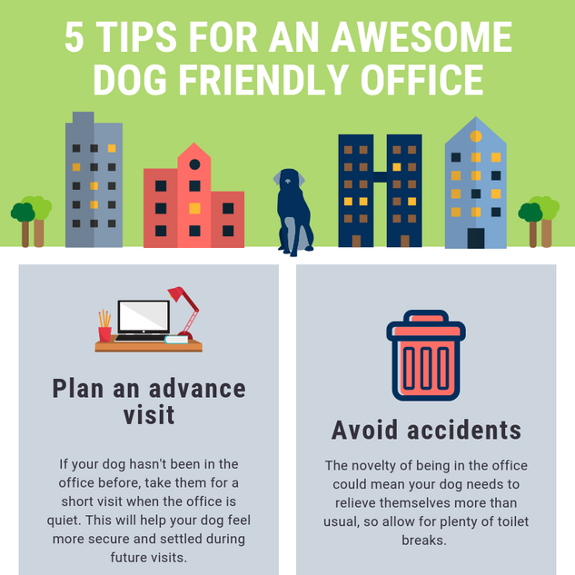 5 tips for an awesome dog friendly office