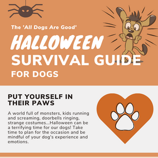 Halloween Survival Guide for Dogs