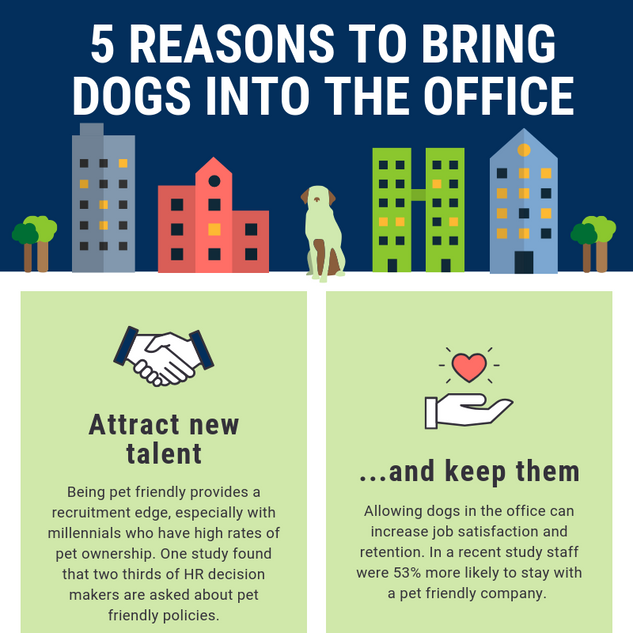 5 reasons to bring your dog into the office