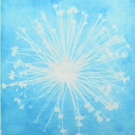 vivacity electric blue