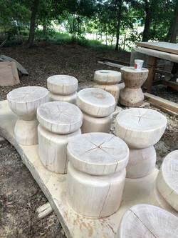 Stumped. Tree stump stools