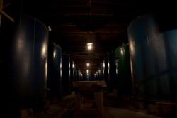 酒蔵ツアーの旅行写真|福岡のカメラマン
