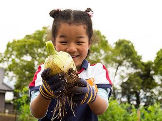 Food education at a nursery school in Sasebo City, Nagasaki Prefecture