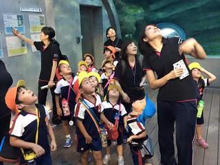 """2016/08/20 Saturday. """"Night zoo"""" みかん・りんご・ぶどう組のサマーキャンプ「夜の森きらら」へ行ってきました!"""