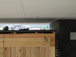 工務店の職人が金属屋根板金を張ります。