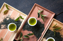 八女茶のコーディネート写真