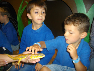 EYFS at 'Otters and Butterflies'!