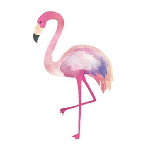 Tattoo FLAMANT Pink (pochette de 5)