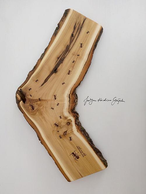 Deska degustacyjna akacjowa z grawerem - Mrówki