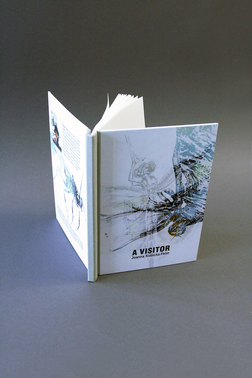 Ksiazka---Projekt-graficzny-calej-ksiazk
