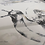 Thumbnail: Ślimaki - reprodukcja na płótnie