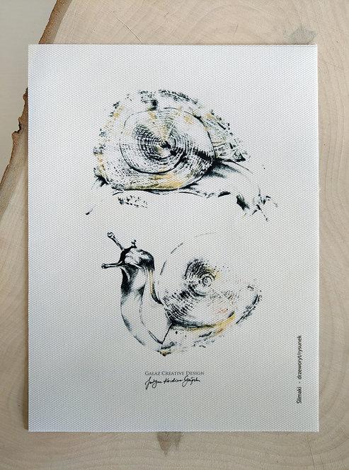 Ślimaki - reprodukcja