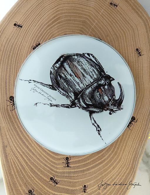 """Podkładka szklana """"Orytes Nasicornis"""""""