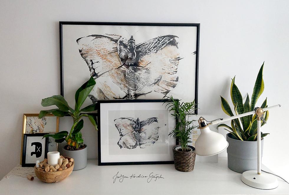 Lepidoptera - reprodukcja na płótnie