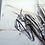 Thumbnail: Modliszka - reprodukcja