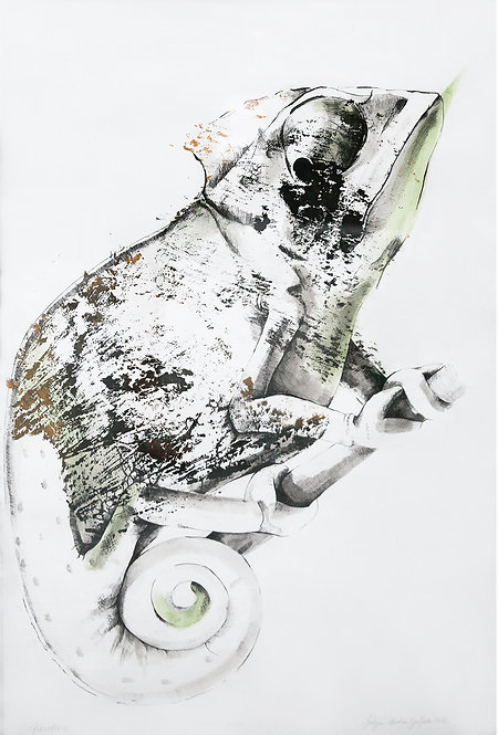 Kameleon - drzeworyt