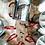 Thumbnail: Kubek górołaza - Obrium Cantharinum