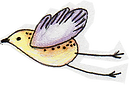 ilustracao-bird-1.png