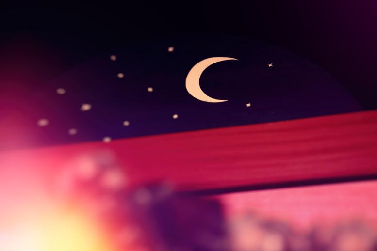 O Canteiro dos Livros
