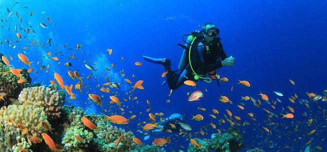 Dive Croatia