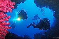 Dive cave