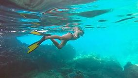 Norman Island Snorkelling.jpg