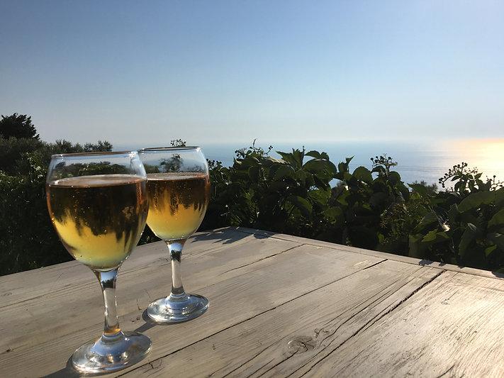 Sail Croatia Wine Week