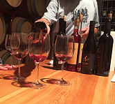 Wine Tasting Sail Croatia