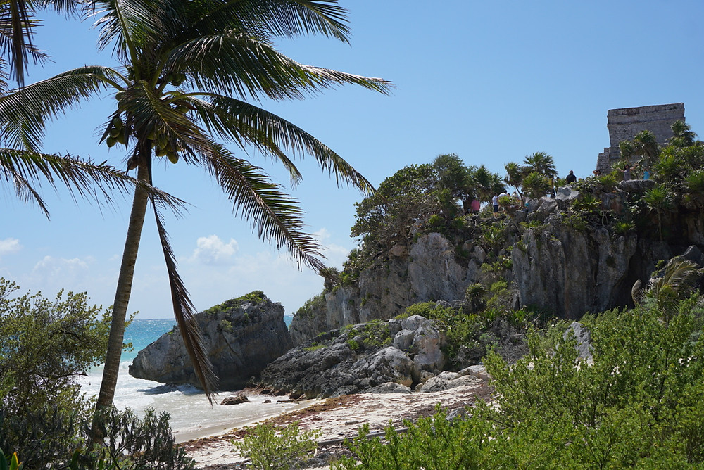 View of Tulum Archeological Zone ruins with beach and palm tree
