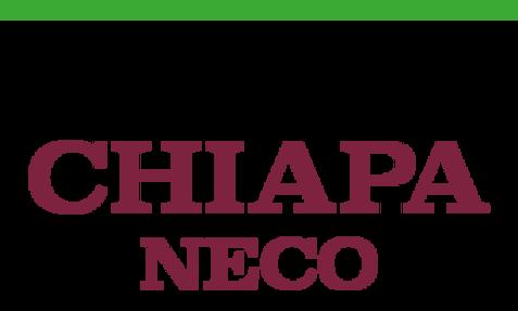Chiapaneco