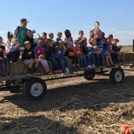 School group at Pumpkin patch
