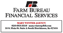 Mary Winter Insurance Agent