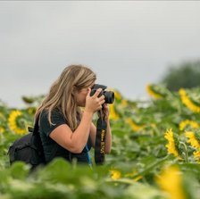 Photographer in sunflowers