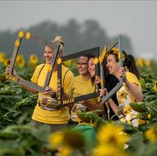 Friends in sunflowers