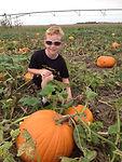Kids in the pumpkin patch