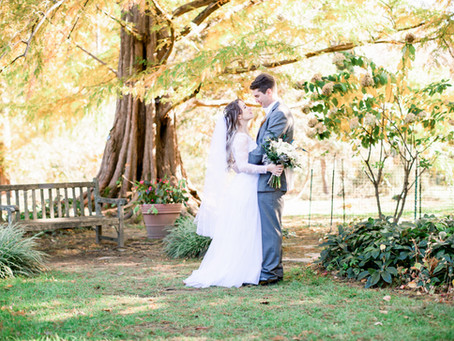Will & Gail \\ Cylburn Arboretum, MD \\ Wedding