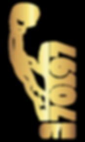 logo-gold_0.5x.png