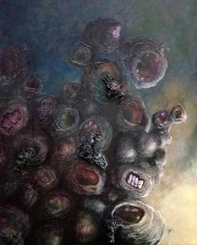 misunderstood barnacles