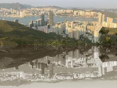 Honk Kong reflection