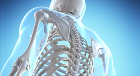 diagnosticos-osteoporose.jpg