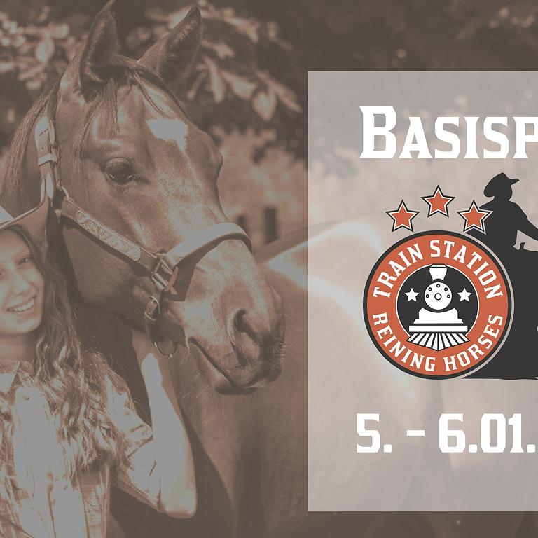 FN Basispass Pferdekunde