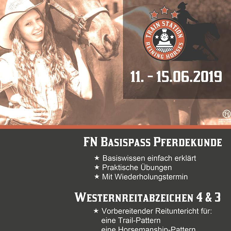 Westernreitabzeichen 4&3 + Basispass