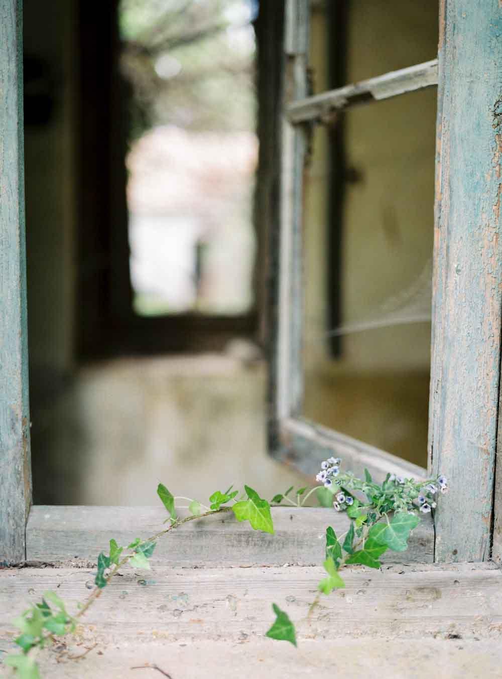 celine_chhuon_photography_tatoi_palace18.jpg