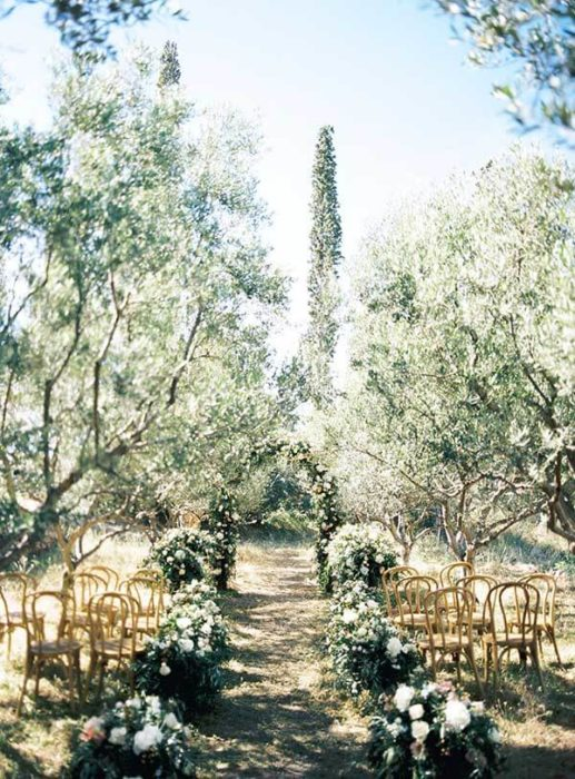 olive-grove-wedding-048-517x700