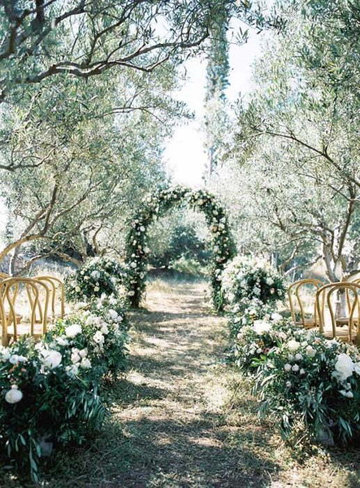 olive-grove-wedding-023-517x700