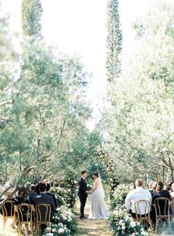 olive-grove-wedding-024-517x700