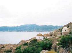 olive-grove-wedding-004