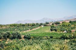 Natural-Alfresco-Wedding-in-Crete-HannaMonika-Photography-32